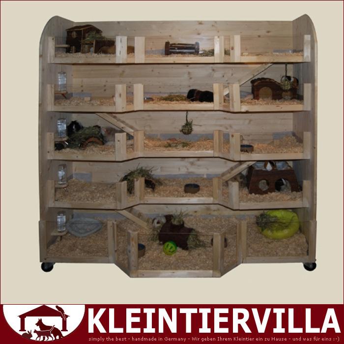 nathalie hochhaus megagross 4 55m meerschweinchen k fig. Black Bedroom Furniture Sets. Home Design Ideas