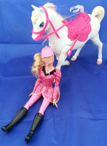 mattel y6858 barbie und ihre schwestern im pferdegl ck puppe mit pferd g nstig kaufen ebay. Black Bedroom Furniture Sets. Home Design Ideas
