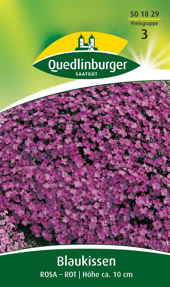 blaukissen rosa rot f r ca 25 pflanzen samen polsterstaude steingarten saatgut ebay. Black Bedroom Furniture Sets. Home Design Ideas