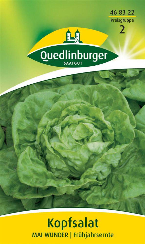 Gemüse Salat Brune D/'Hiver Winter Ca 500 Samen
