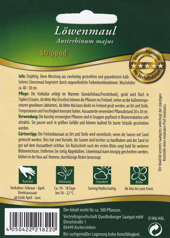 für ca 300 Pflanzen Löwenmaul Stripped  Samen Saatgut Blumen Aussaat Beet Blume