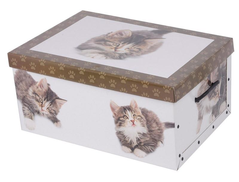 2er aufbewahrungs box mit deckel katzenmuster kiste karton. Black Bedroom Furniture Sets. Home Design Ideas