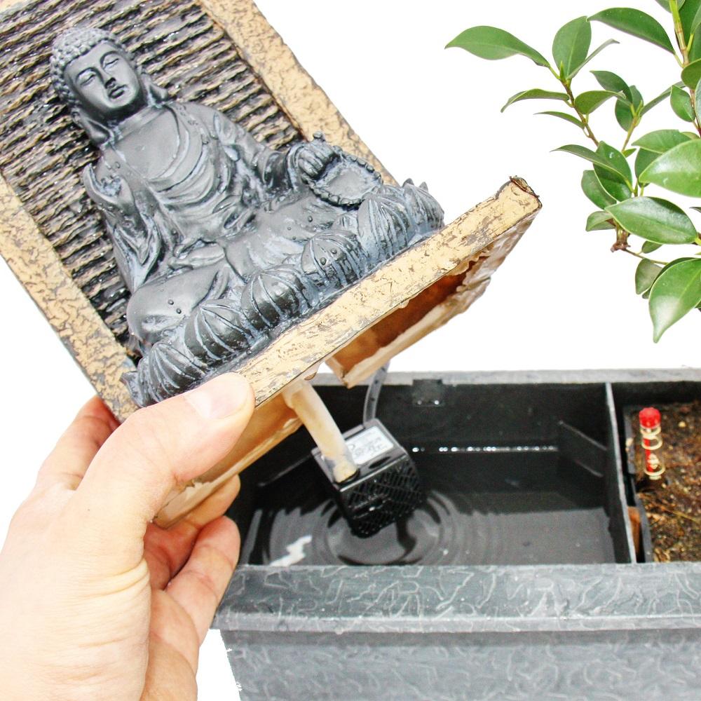 bonsai chinesischer feigenbaum 6 7 jahre mit buddha brunnen ebay. Black Bedroom Furniture Sets. Home Design Ideas