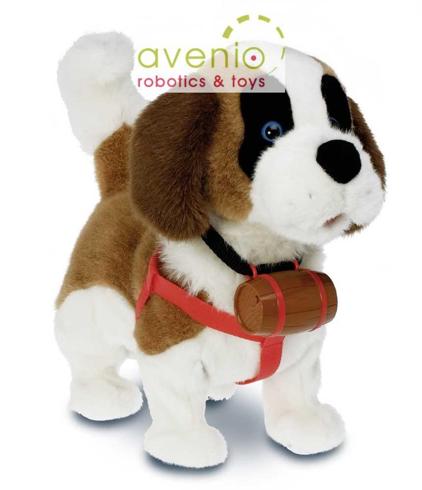 Samby funktionshund läuft bell begrüßt dich kaut knochen