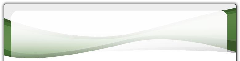 stihl feile feilenhalter 2 in 1 mit tiefenbegrenzerfeile 4 8 mm f r 325 s gekett ebay. Black Bedroom Furniture Sets. Home Design Ideas