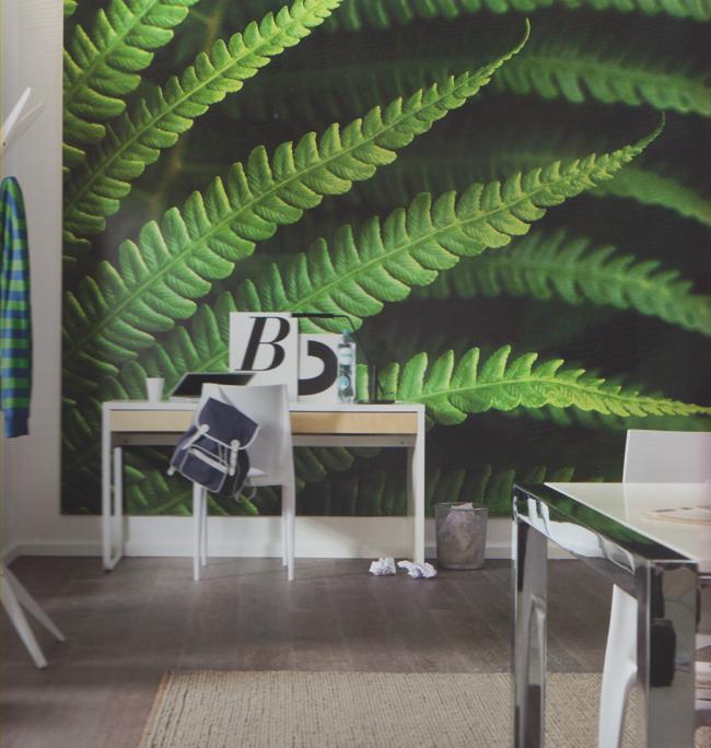 komar munichdesign vlies fototapete farn 250 x 350 cm euro pro m ebay. Black Bedroom Furniture Sets. Home Design Ideas