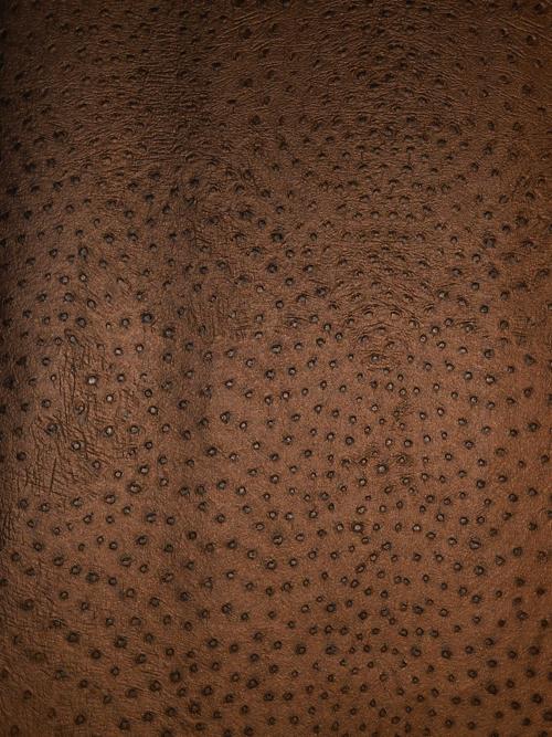Rasch Tapeten Lederoptik : African Queen Lederoptik-Tapete 423617 Vlies-Tapeten v. Rasch (4.01