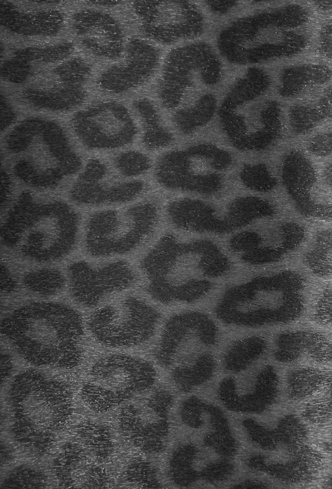 gl ckler leoparden tapete vlies tapeten 52587 euro pro m ebay. Black Bedroom Furniture Sets. Home Design Ideas