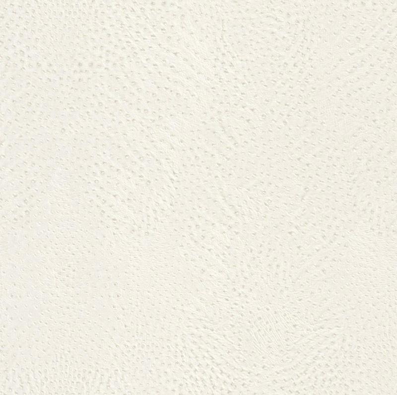 African queen ii papier peint polaire 423655 cuir d for Papier peint aspect cuir