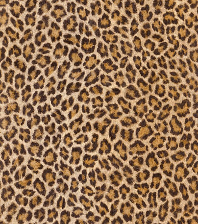 Regina d 39 africa ii carta da parati non tessuta 473612 for Carta da parati leopardata