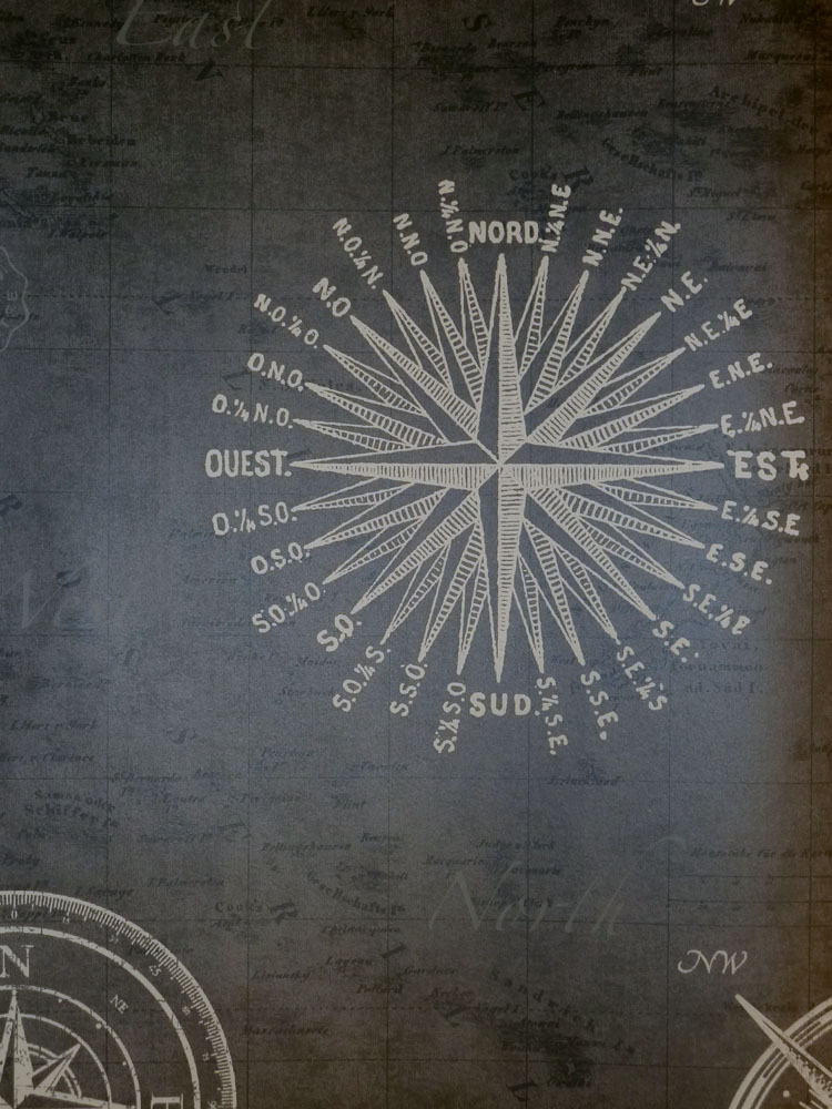 match race vlies tapete 021215 maritim kompass anthrazit euro pro m ebay. Black Bedroom Furniture Sets. Home Design Ideas