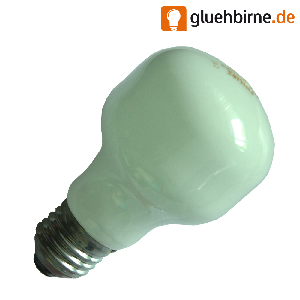 Philips Softone 100w Light Bulb Filechecker
