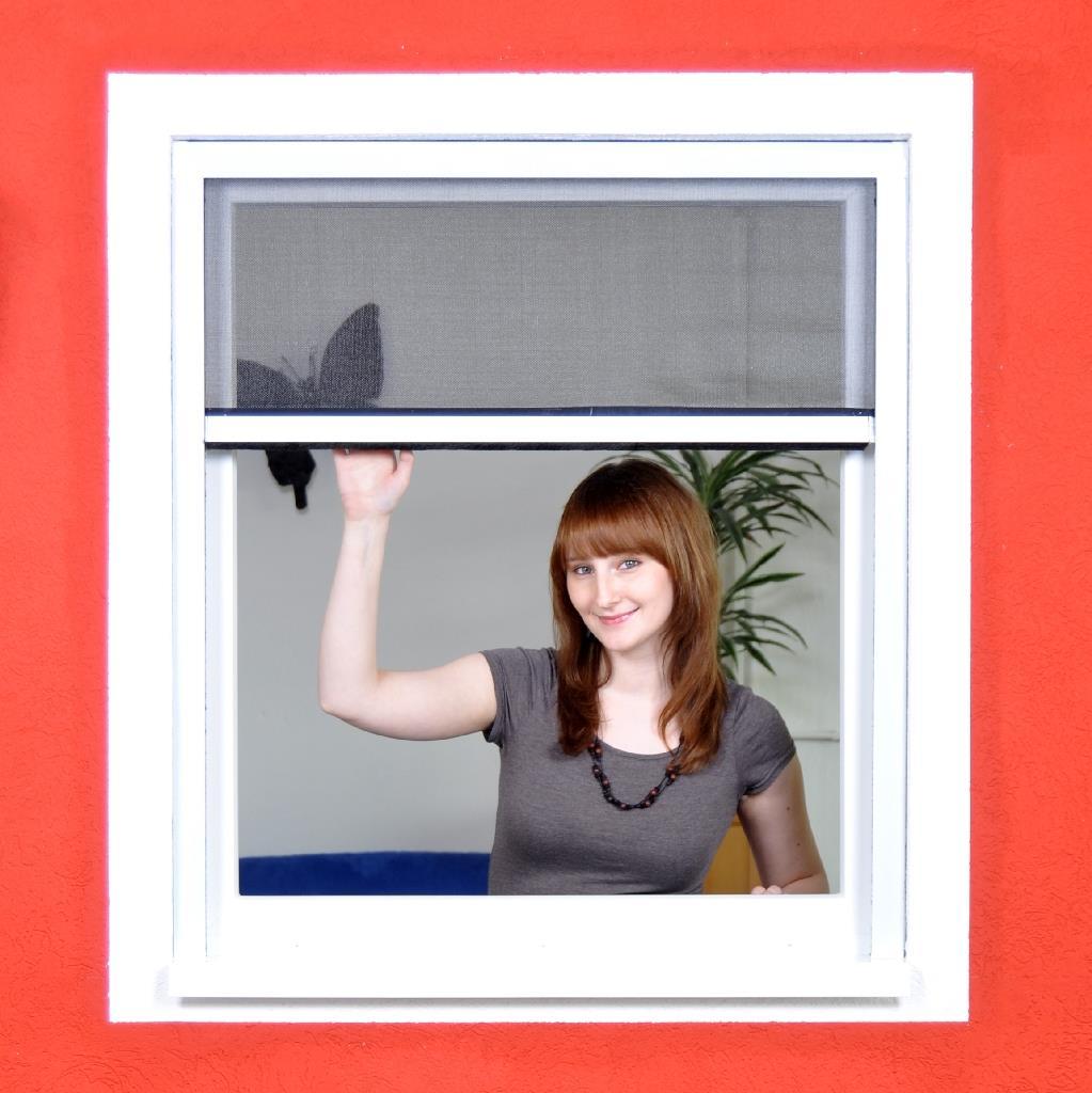 3x fliegengitter rollo alu bausatz basic fenster alle gr en insektenschutz wei ebay. Black Bedroom Furniture Sets. Home Design Ideas