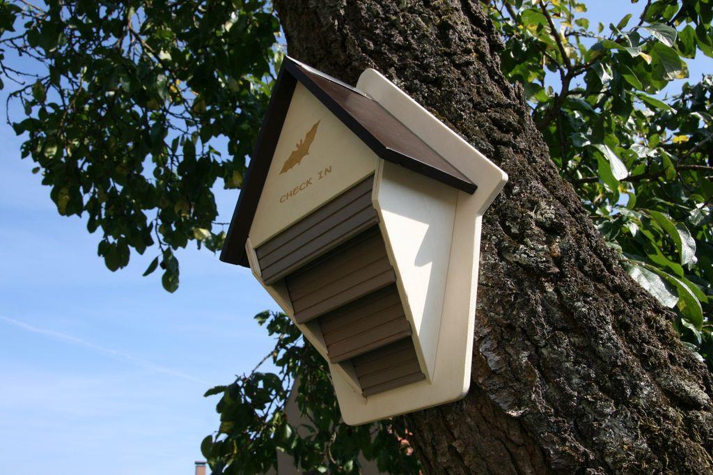 fledermauskasten unterschlupf f r flederm use fledermaus haus artenschutz ebay. Black Bedroom Furniture Sets. Home Design Ideas