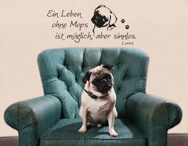 g302 wandtattoo ein leben ohne mops zitat loriot wandaufkleber aufkleber hund ebay. Black Bedroom Furniture Sets. Home Design Ideas