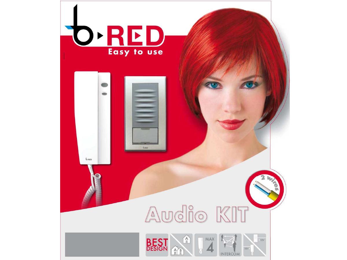 sprechanlage 2 draht bus bpt b red komplett f r 1 bis 2 familien aufputz ebay. Black Bedroom Furniture Sets. Home Design Ideas