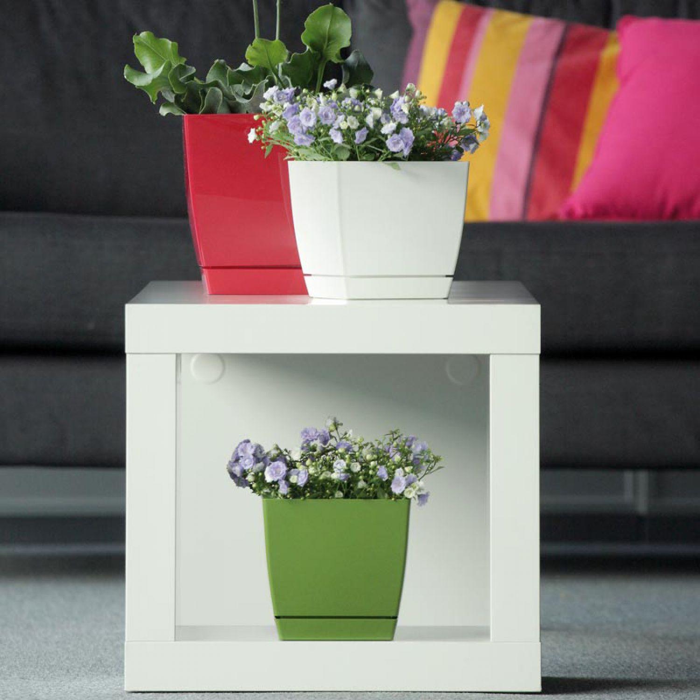 Blumentopf Untersetzer Quadratisch blumentopf quadratisch blumenkübel coubi mit untersetzer 10 cm weiß
