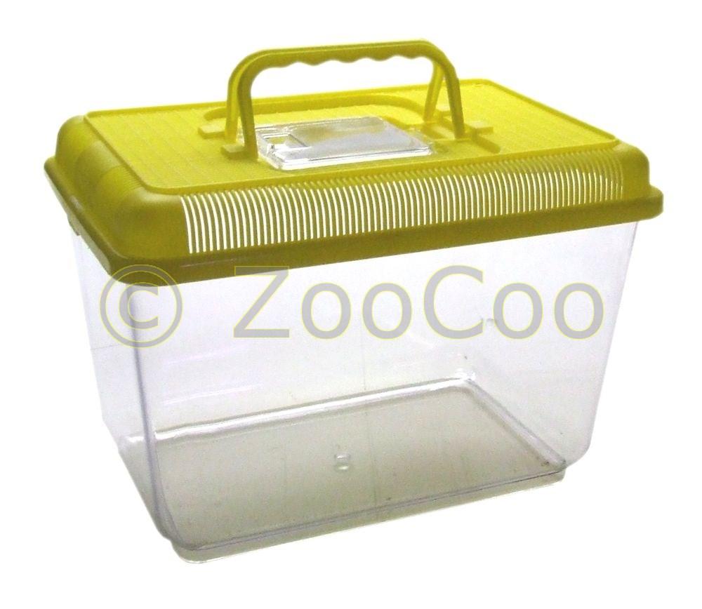 Fauna-Box-4-Groessen-Aquarium-Terrarium-Becken-Kunststoff-Faunarium-Transportbox