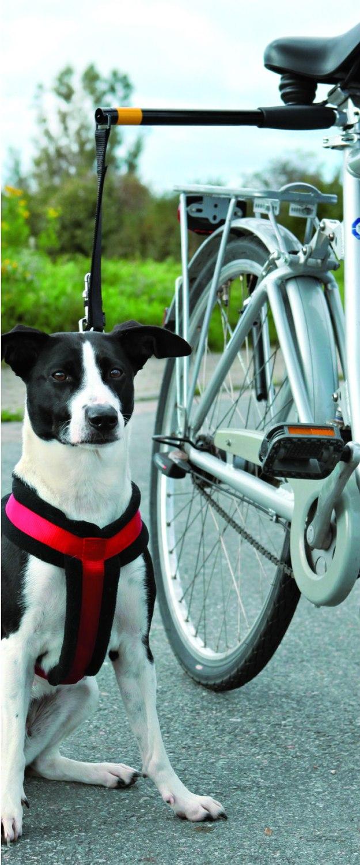 fahrrad abstandhalter hunde fahrradleine f hrhalter. Black Bedroom Furniture Sets. Home Design Ideas